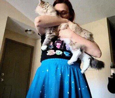 Enlace a Cuando estás perfectamente sincronizada con tu gato