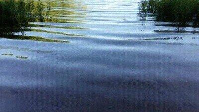Enlace a Ver agua en cámara lenta puede ser la mar de relajante