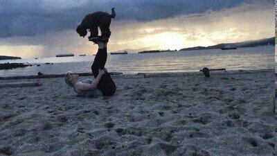 Enlace a Haciendo trucos con el perro en la playa es lo más divertido del mundo