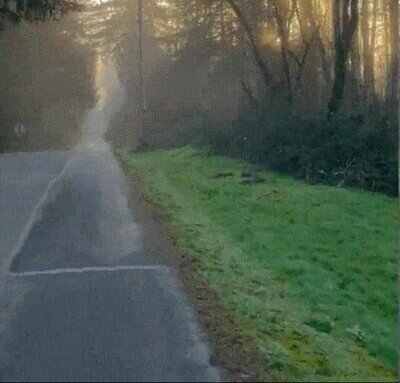 Enlace a Uno de los paisajes más bellos que puedes ver en la carretera