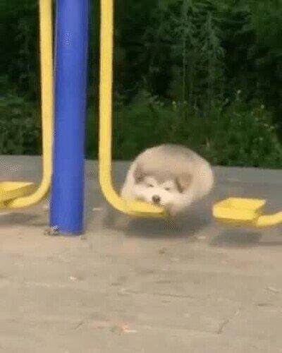 Enlace a Cuando te llevan al parque a jugar pero no tienes amigos ni hermanos
