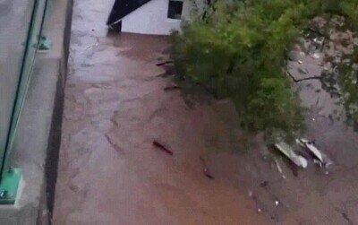 Enlace a Las inundaciones en Alemania han sido terribles