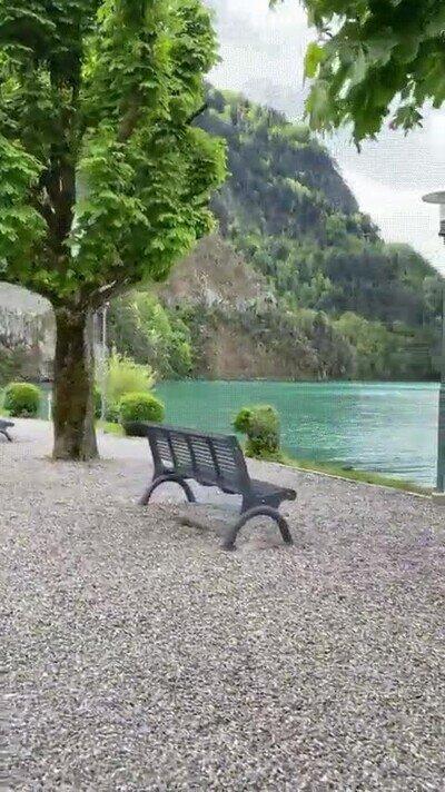 Necesito ir a Suiza