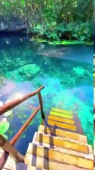 Enlace a Cenote Ojo Azul, ojalá estar ahí ahora mismo