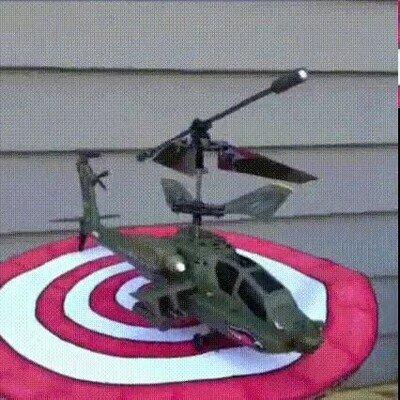 Enlace a Un helicóptero despegando desde la cabeza de un perro