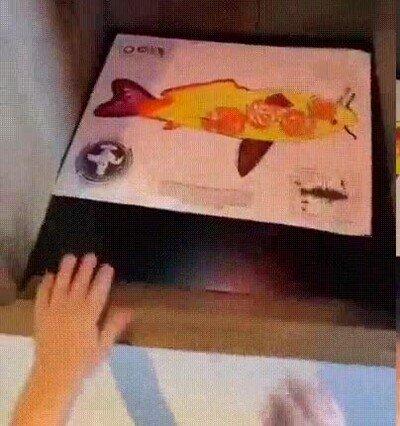 Enlace a Un acuario que permite a los niños ver los peces que han dibujado