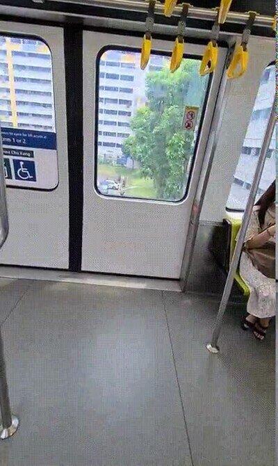 Enlace a Las ventanas de este tren se vuelven opacas cuando pasan por bloques residenciales