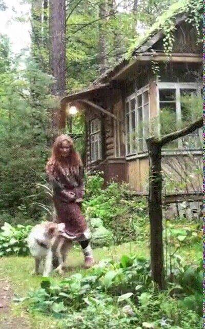Enlace a Bailando con un perro en la montaña