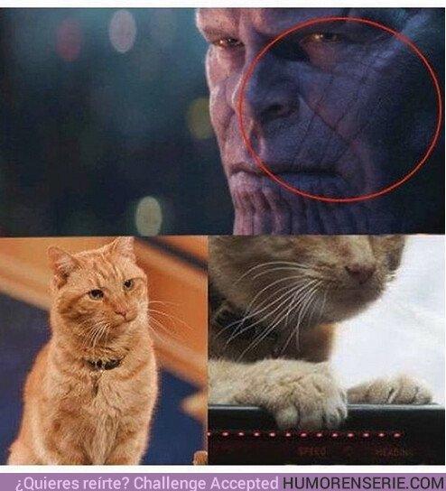 35875 - El secreto detrás de las marcas de Thanos