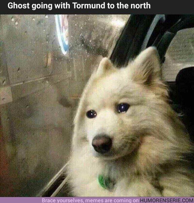 37856 - Fantasma acompañando a Tormund al norte