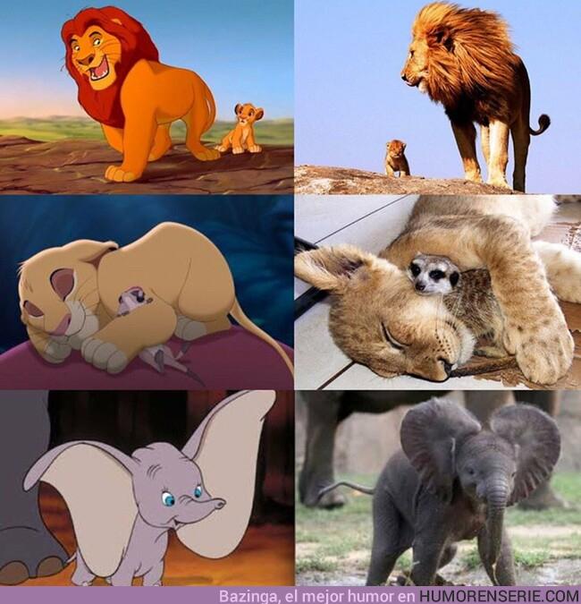 39305 - El increíble detalle de las adaptaciones de Disney