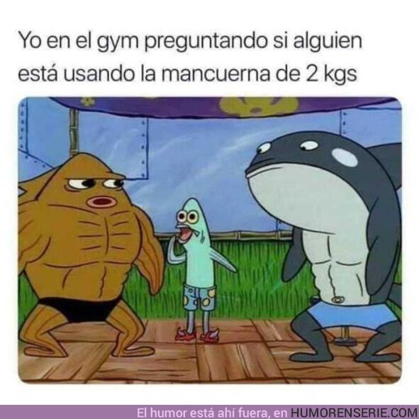 39368 - Cada vez que voy al gimnasio