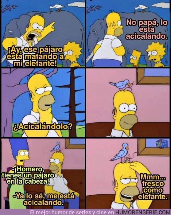 46105 - La lógica de Homer