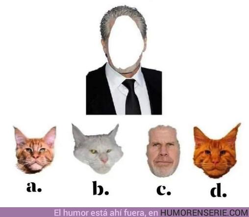 46681 - Necesito ayuda para recomponer la cara de Ron Pearlman