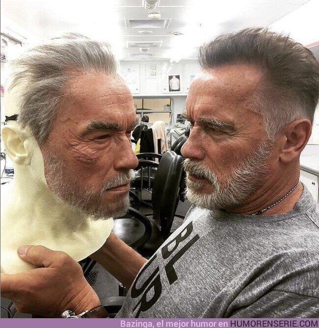 49180 - Arnold VS Arnold