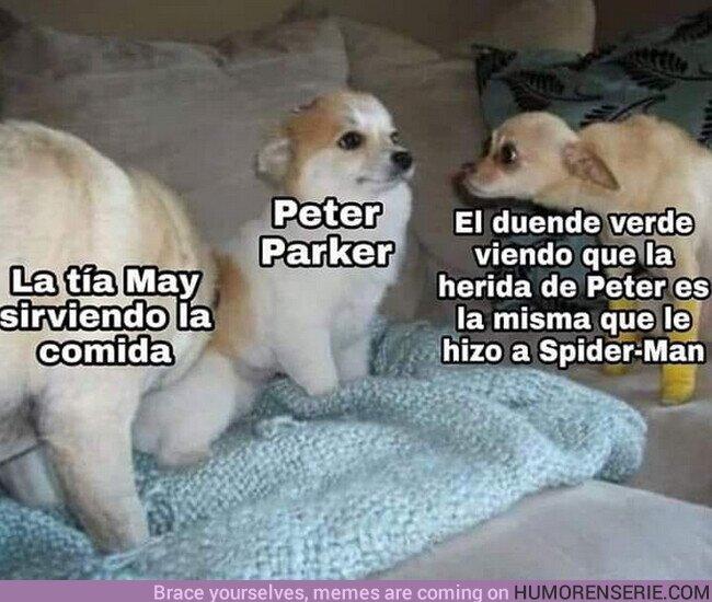 51230 - Las has cagado, Peter