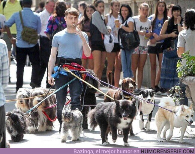52159 - Harry Potter dando un paseo con Sirius y sus amigos