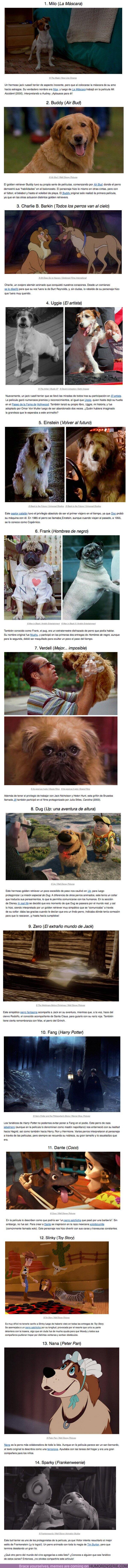 52224 - Estos 14 perros del mundo del cine se ganaron un hueco en nuestro corazón por varios motivos