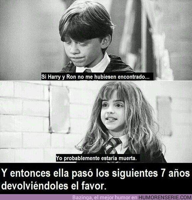 53002 - Desde entonces, Hermione Granger se volvió su amiga
