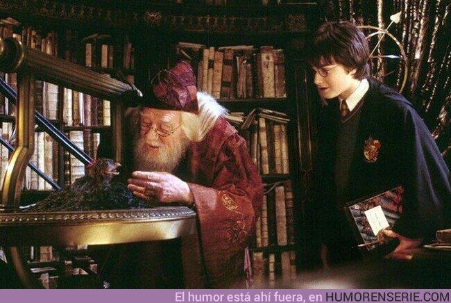 54826 - Son nuestras elecciones, Harry, las que muestran lo que somos, mucho más que nuestras habilidades