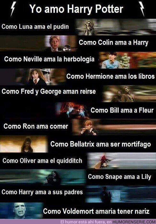 60713 - Yo amo Harry Potter