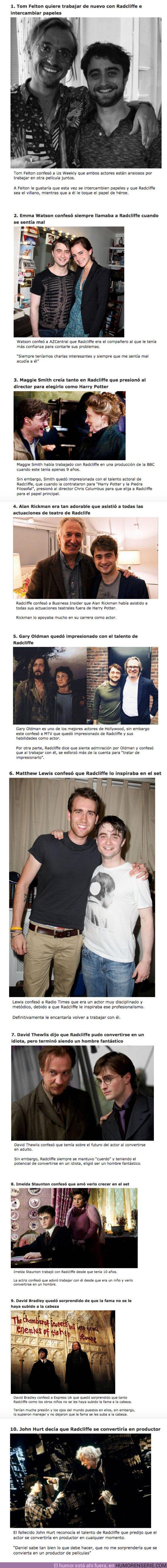 60717 - GALERÍA: 10 Actores de Harry Potter confesaron la opinión que tienen de Daniel Radcliffe