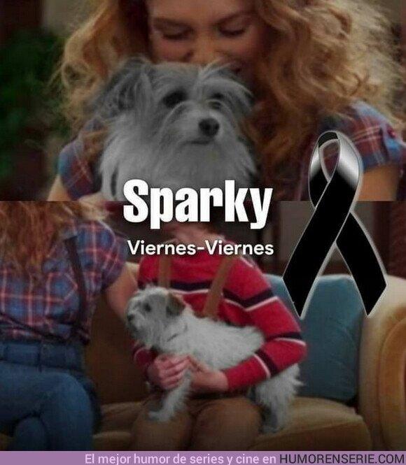 66259 - Descansa en paz pequeño Sparky