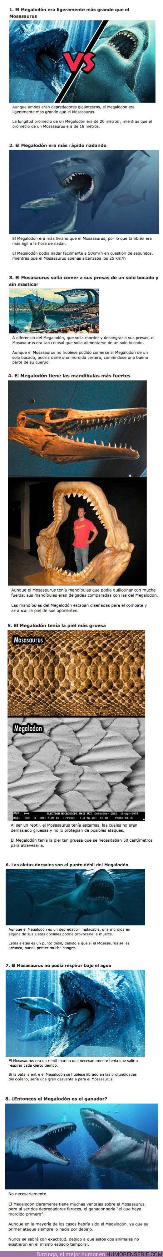 67075 - GALERÍA: Megalodón vs Mosasaurus: ¿Quién ganaría la batalla?