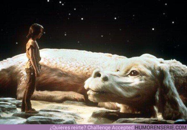 """68974 - """"Lo mejor para emprender una búsqueda, es la compañía de un dragón."""""""