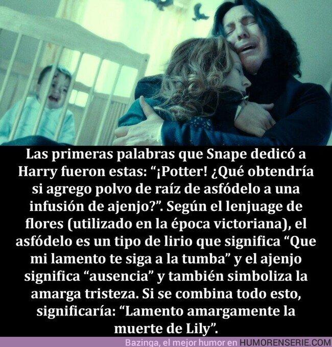 78080 - Un fan descifró el significado de las primeras palabras que Snape le dice a Harry. ¿Casualidad?
