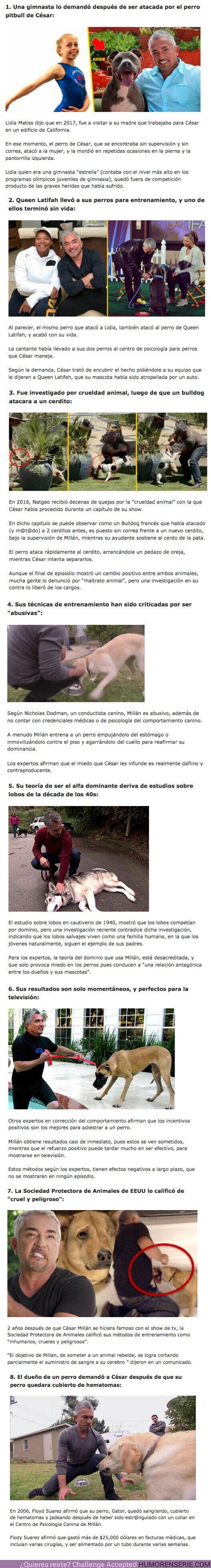 80957 - GALERÍA: 8 Escándalos protagonizados por César Millán, el encantador de perros