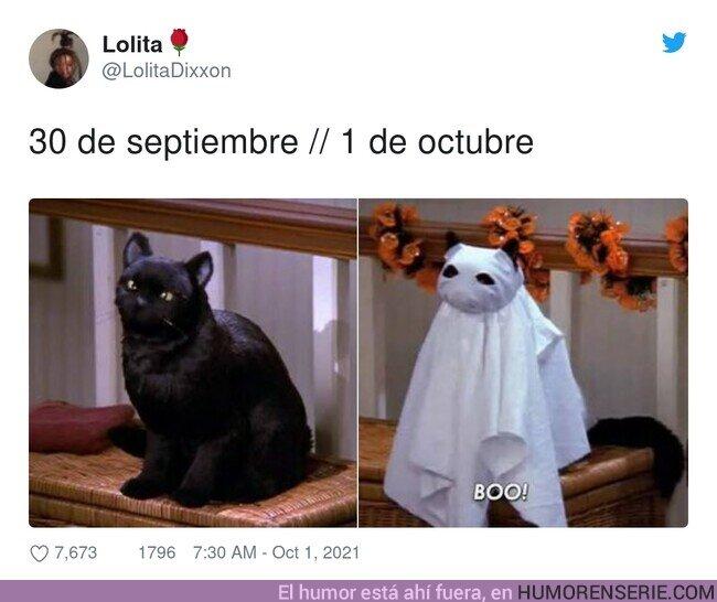 81988 - Mes de Halloween, por @LolitaDixxon