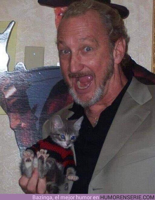 82562 - Freddy Krueger con su gatito disfrazado de él