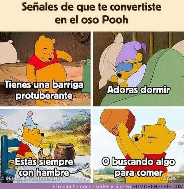 82566 - Todos somos Winnie the Pooh