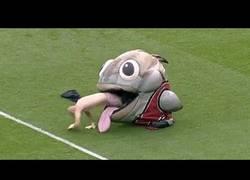 Enlace a La mejor recopilación de las mascotas más locas de la MLB