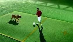 Enlace a Messi regatea hasta a un perro en su último anuncio. Lo deja por el suelo como a Boateng