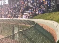 Enlace a Cuando vas a ver baseball y es más interesante ver cómo salta una rata