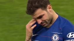 Enlace a Cesc dijo adiós a la Premier League entre una ovación y llorando