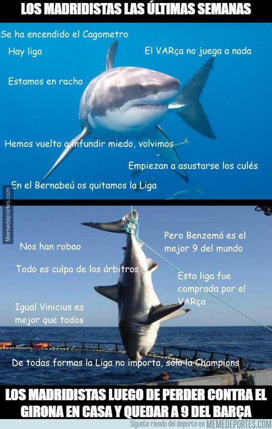 1064815 - Los catalanes han pescado a ese gran Tiburón Blanco