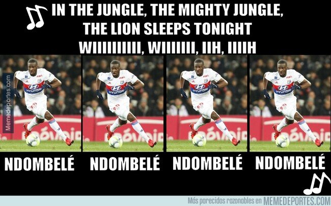 1064989 - The jungle song