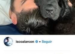 Enlace a Isco sube una foto echando la siesta con su perro Messi y todos los comentarios dicen lo mismo