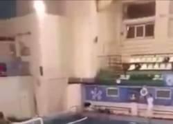 Enlace a ¿Alguna vez has visto como es una pelea en un partido de waterpolo? Así.