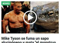 Enlace a Cada noticia que sale sobre Mike Tyson es más extraña que la anterior