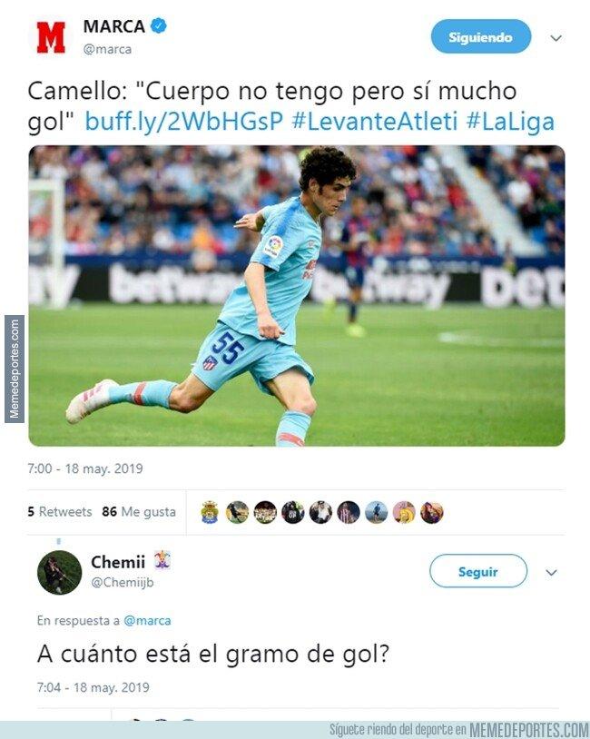 1075393 - El camello del gol