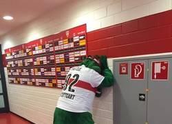Enlace a La dolorosa foto de la mascota del Stuttgart en los camerinos después del descenso.