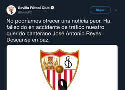 Enlace a Descanse en paz José Antonio Reyes... :(