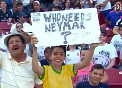 Enlace a Mientras tanto en Brasil...