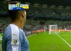 Enlace a Suárez se comió a Ecuador