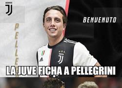 Enlace a Te confundes de Pellegrini, Cristiano