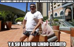 Enlace a Pig Raiola